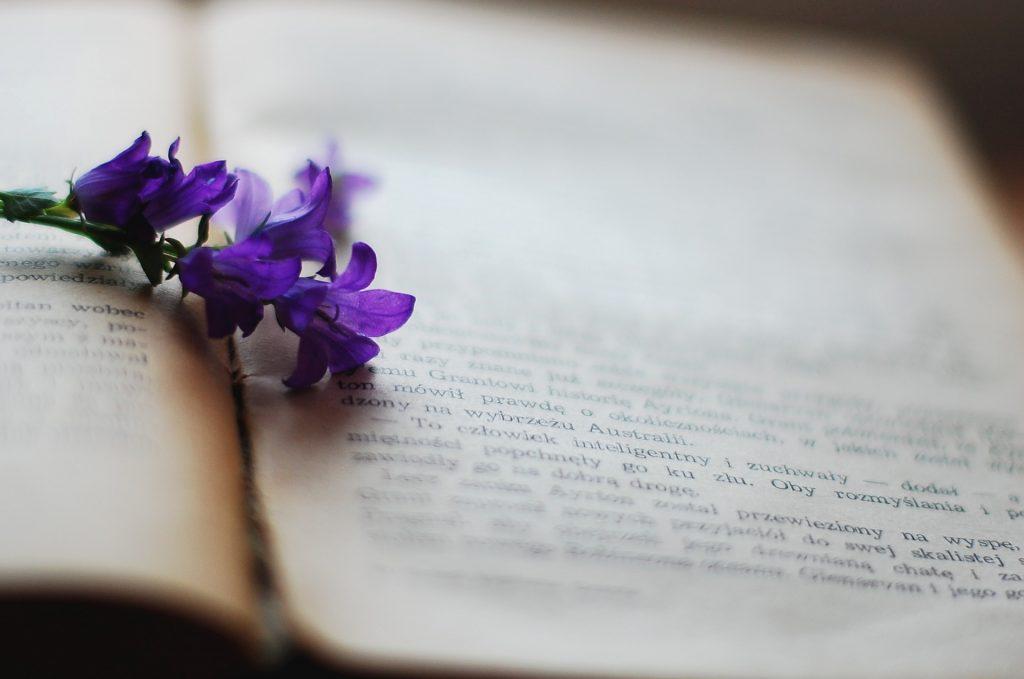 Imagen de un libro con una flor en el el medio de las dos páginas.