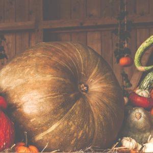 Aprende los sonidos en inglés con actividades de Halloween