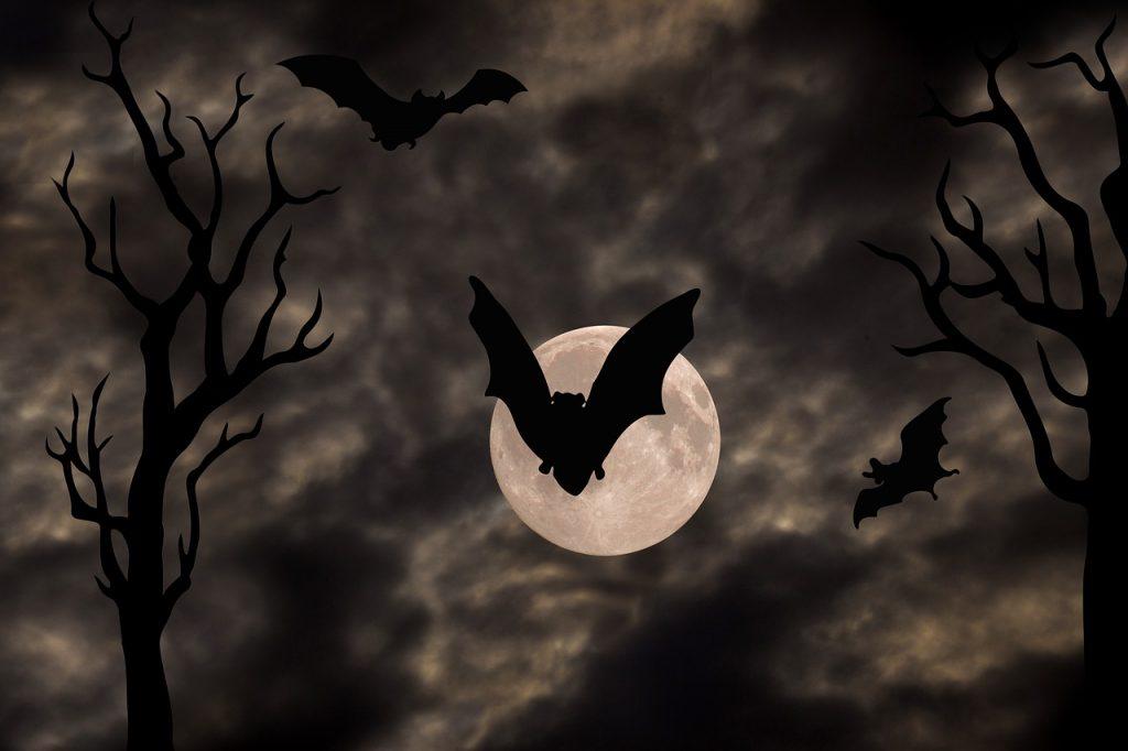 Imagen de unos murciélagos volando por la noche